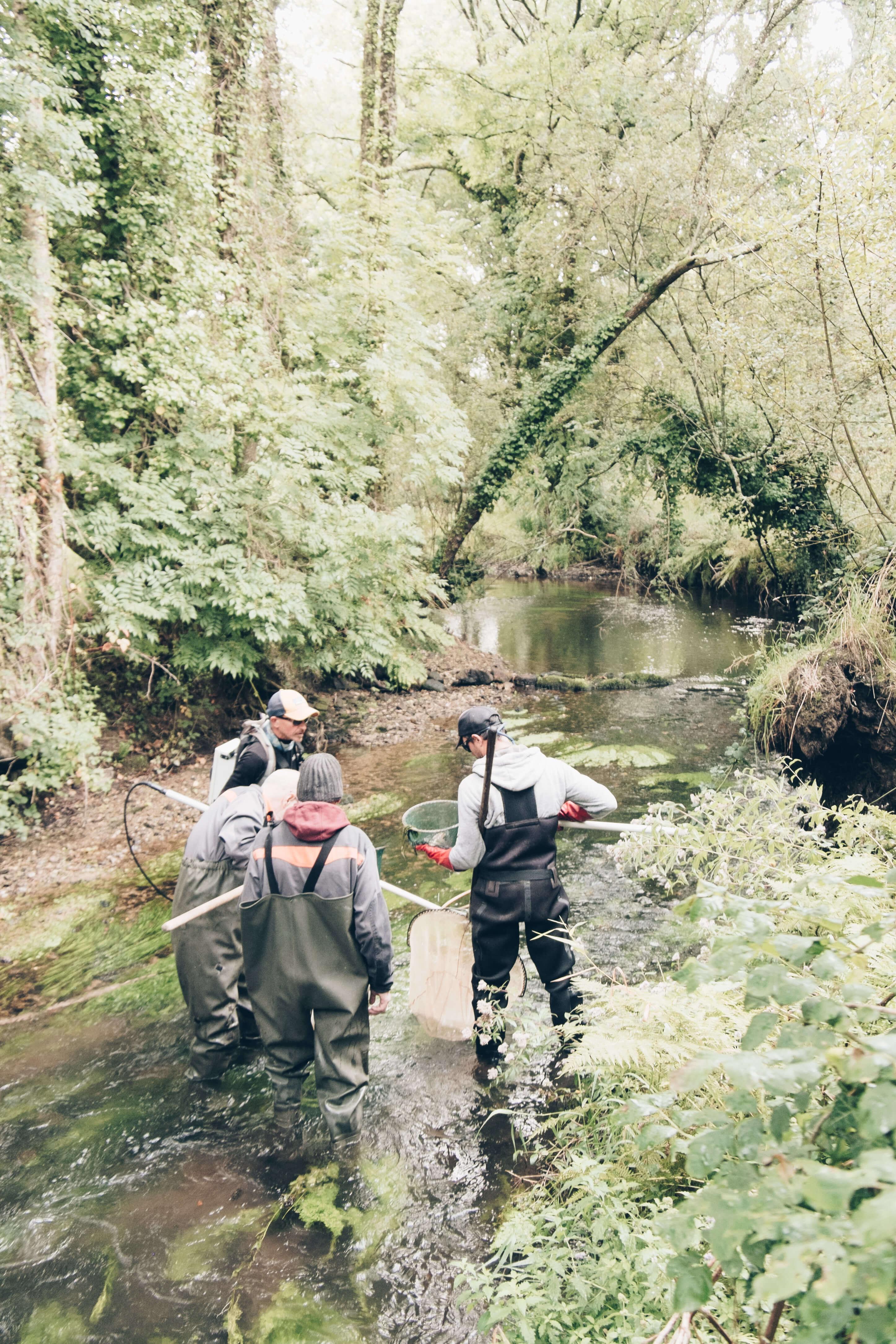 Action de recensement dans la rivière du Goyen…